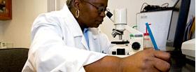 Innovation - Laboratory Analysis